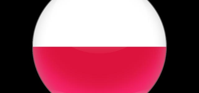 Покупки в Польше. Доставка товаров из Польши.